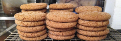old fashioned molasses krinkles